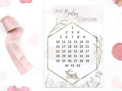 "Baby-Countdown ""Alpine"" - 1"