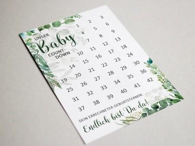 "Baby-Countdown ""Eucalyptus"" - 2"